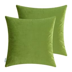 Pack of 2 CaliTime Cozy Throw Pillow Covers Cases for Couch