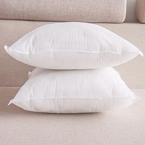 HIPPIH Pack Pillow Insert 20 20 Square Pillow