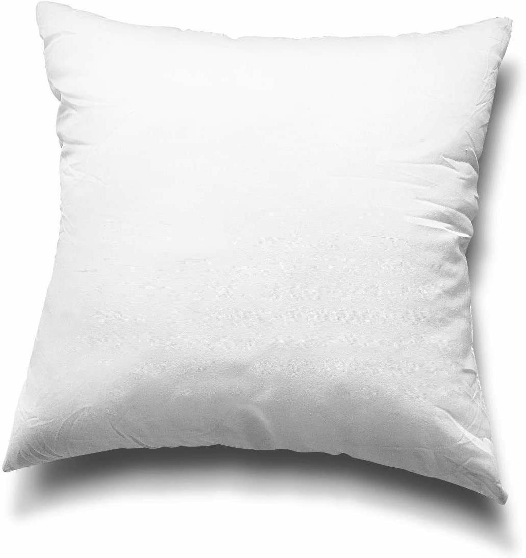 Throw Pillow Inserts, Set of 2 Lightweight Down Alternative