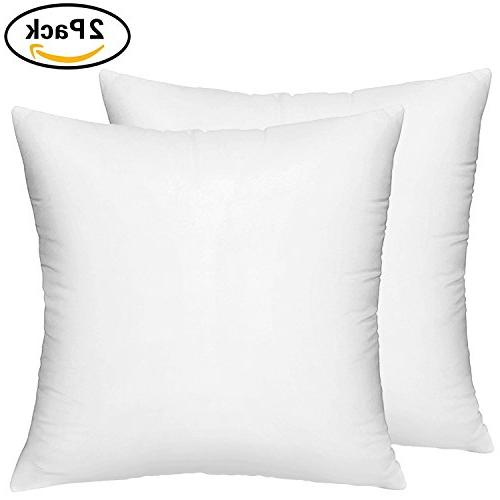 2 packs pillow insert