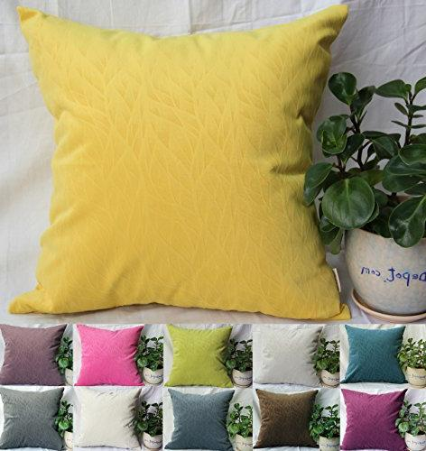solid velvet decorative pillow covers
