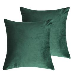 4TH Emotion Pack of 2 Cozy Velvet Throw Pillow Covers Cases
