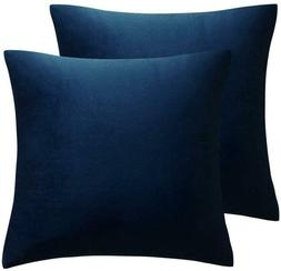 Juspurbet Pack Of 2,Velvet Decorative Throw Pillows Covers C