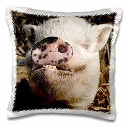 3dRose pc_92681_1 Pet Pot Bellied Pig, Farm Animal, New Mexi