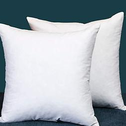 Set of 2, Square Decorative Throw Pillows Inserts Down and F