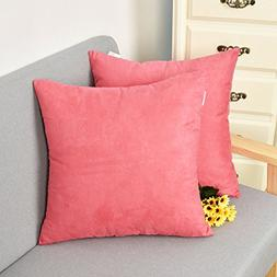 2 Pieces Velvet Throw Pillow Covers Cushion Cover for Sofa/C